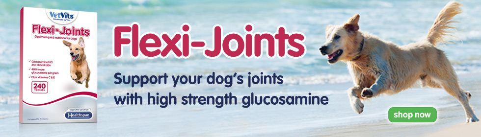flexi joints dog